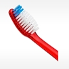 POWER POINT soft bristles bulk toothbrush