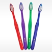 POWER POINT assorted colored pearlized handles bulk toothbrush