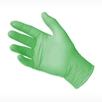 picture of HALYARD FLEXAPRENE GREEN Chloroprene Dental Exam Glove