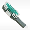 Green and Gold Officially licensed NFL team Green Bay Packers toothbrush