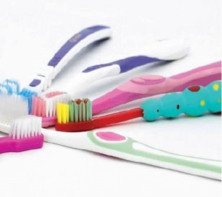 Assorted Quantum Bulk Toothbrushes 12-pack for take home